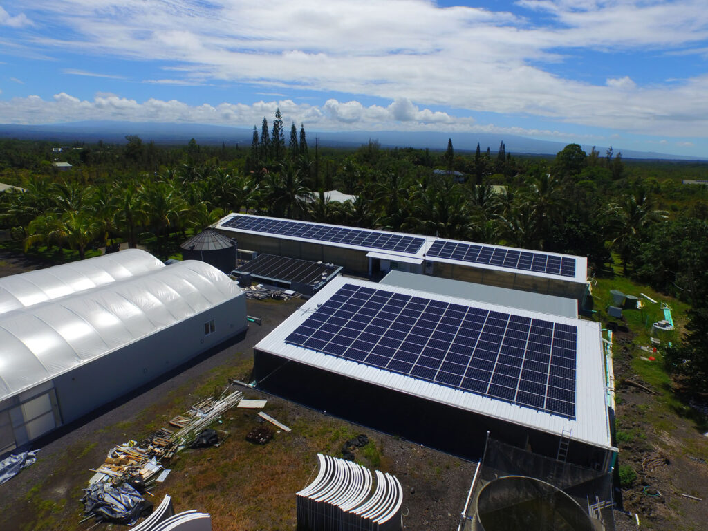 Solar panels at Hawaiian Shellfish in Kea'au, Hawaii